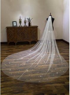 One-tier Cut Edge Cathedral Bridal Veils With Lace (006190593)