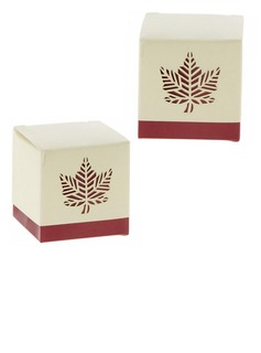 12pcs/set Classic Fall Leaf Favor Box (050154083)