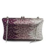 Glänzende Acryl Handtaschen/Luxus Handtaschen (012027400)