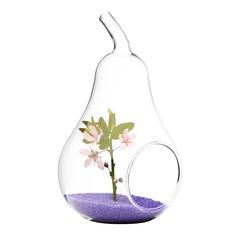 Birnenförmiger Glas Vase (128048470)